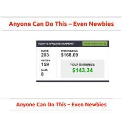 No Real Income